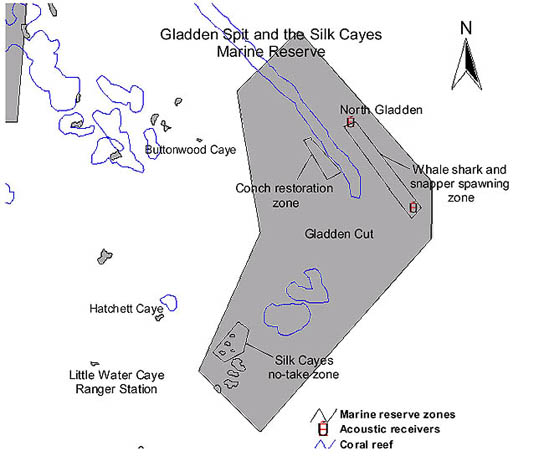 The Belize Whale Shark Expedition Belize Map